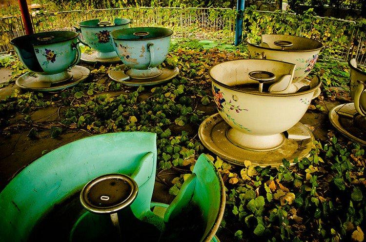 teacups overgrown