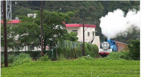 thomas smoke greenery