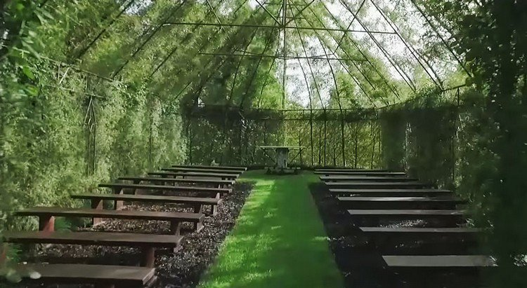 tree church pews