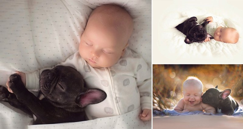 Baby And Bulldog Born On Same Day Are Best Pals - Ivette ivens baby bulldog