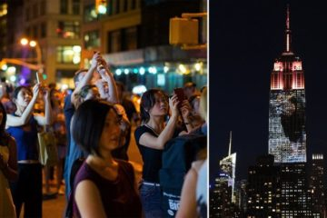 Cecil The Lion And Endangered Species Projected Onto Empire State Building