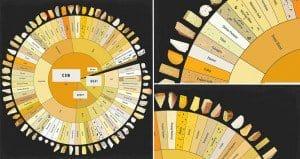Giant Cheese Chart