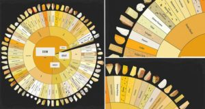 Giant Cheese Chart