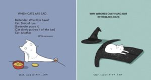 Illustrated Truths About Cats