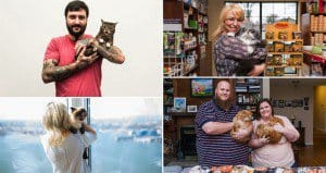 Instagrams Most Famous Felines