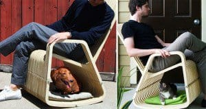 Rocking-2-Gether Chair For People And Pets