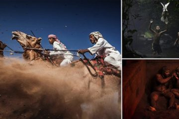 Winning Shots National Geographic Traveler Photo Contest