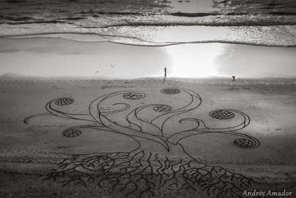 andres-amador-beach-art-a-tree