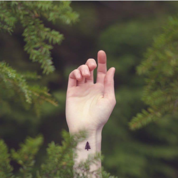 austin-tott-tiny-tattoos-trees