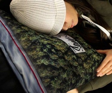 bag of weed cushion cover pillow