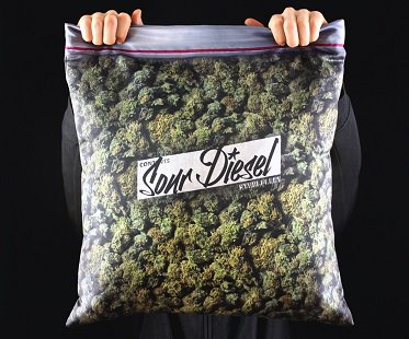 Bag Of Weed Cushion Cover