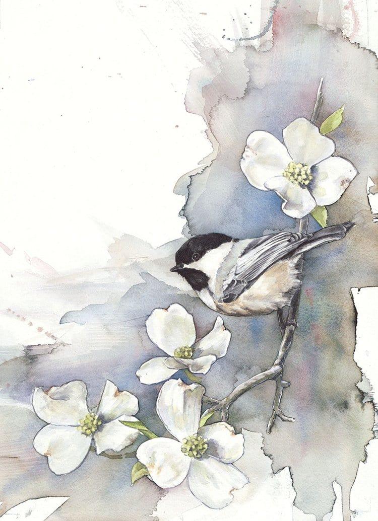 bird-watercolor-paintings-anne-balogh-chickadee