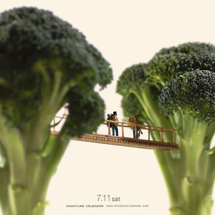 broccoli mini jungle