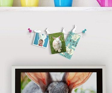bunny clip picture hangers