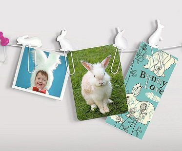 bunny clip picture hangers trail