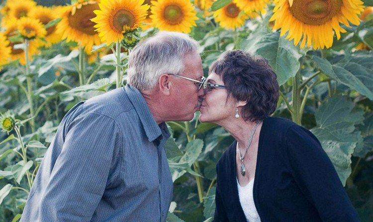 couple sunflowers
