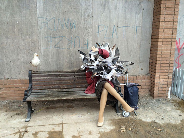 dismaland woman pigeons