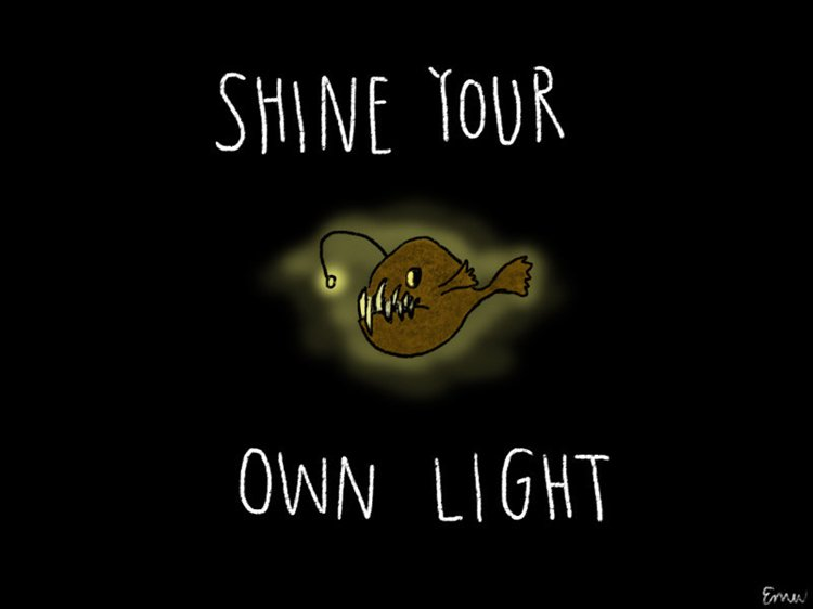 inspirational-animal-illustrations-shine