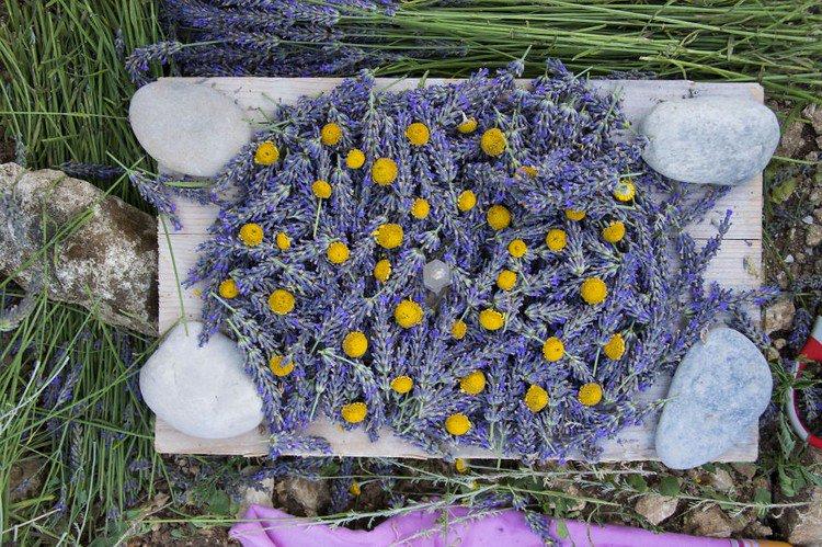 lavender art stones