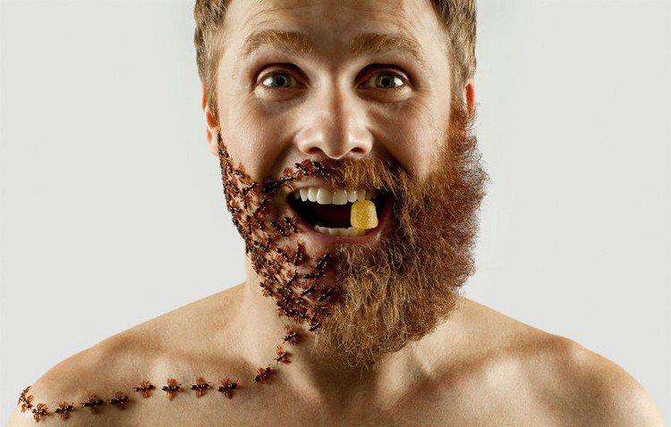 man half beard half ants