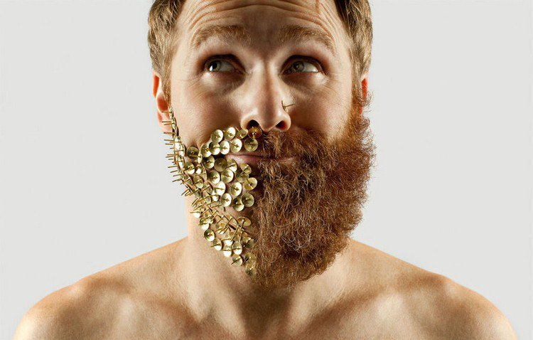 man half beard half pins