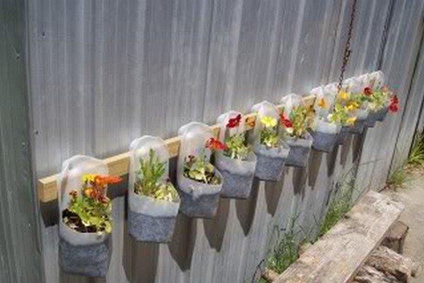 milk jug planters