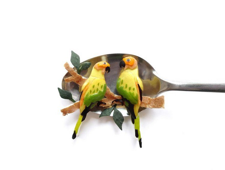 parrots on spoon
