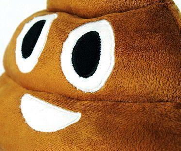 poop emoji pillow brown