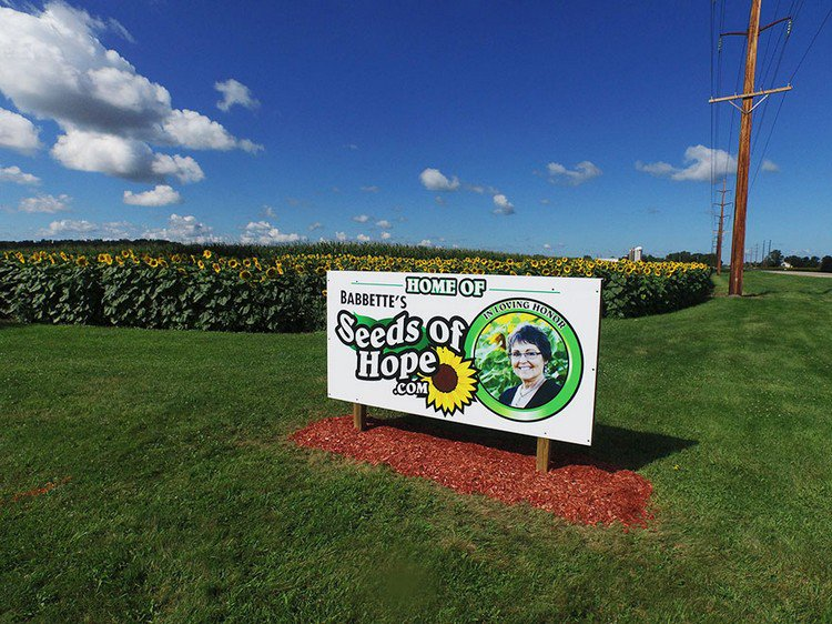 seeds of hope sign