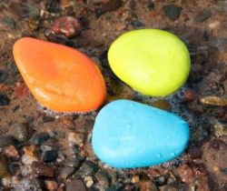 skipping stones dog toys