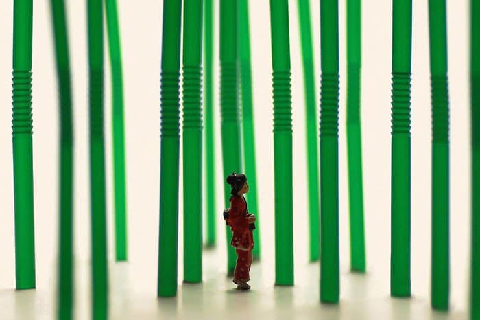 straw forest