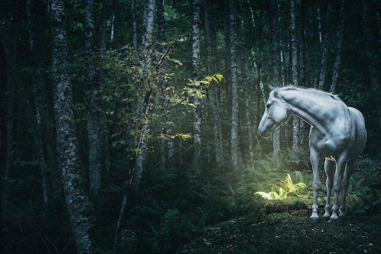troy-horse
