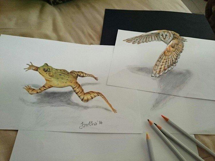 3d frog bird