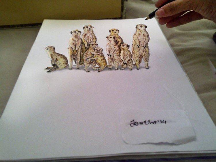 3d meerkats