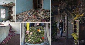 Lisa Waud Flowers Abandoned Properties