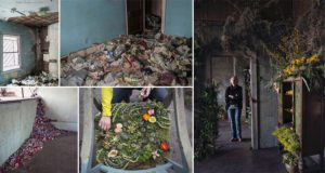 Lisa Waud Flowers Abandoned Properties