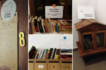 Man Creates Mini Library For Neighbours