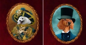 Nobility Dogs