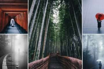 Photographer Captures The Beauty Of Life In Japan