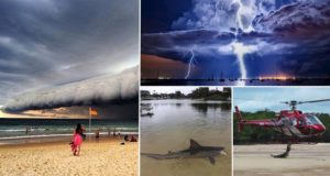 Photos That Will Make You Respect The Bravery Of Australian Residents