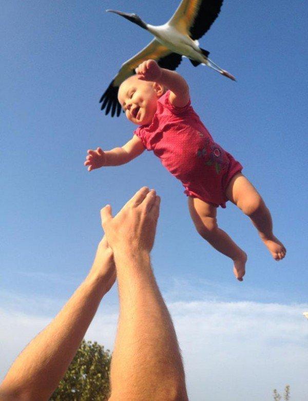 baby air bird