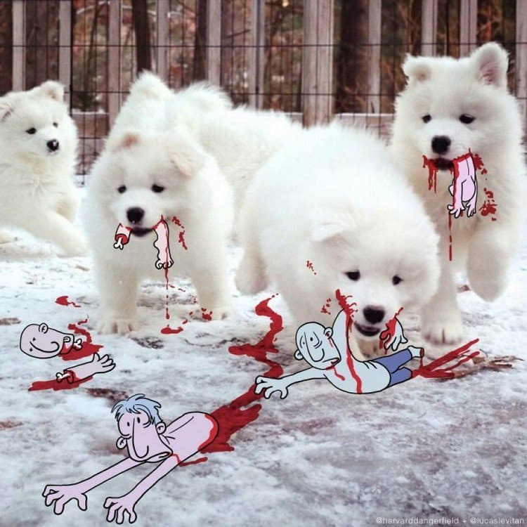 cute massacre