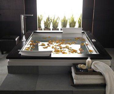 dual whirlpool bathtub jacuzzi