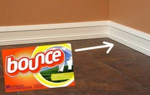 fabric softener baseboards