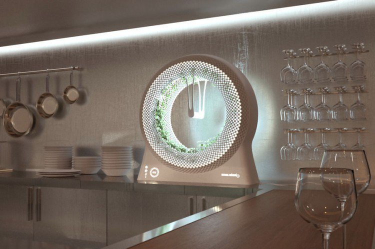 green wheel kitchen