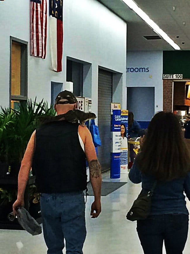 guy squirrel shoulder walmart