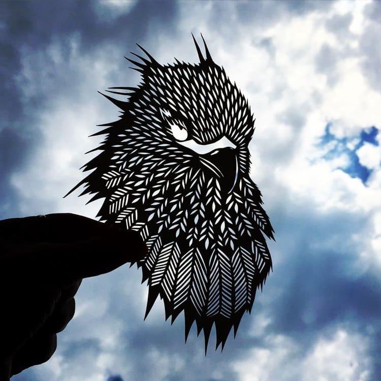 jo-chorny-hawk