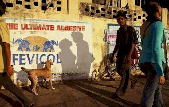 people walking dog looking at kissing shadow
