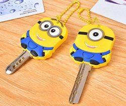 minion key covers