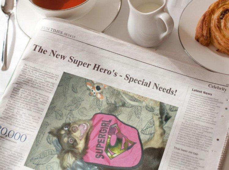 nubbins newspaper article